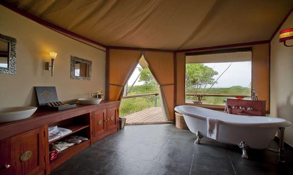 生態深度旅遊正夯!Olare Mara馬賽馬拉帳篷營地