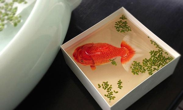 驚人技藝!新加坡藝術家Keng Lye 超真實3D繪畫雕塑