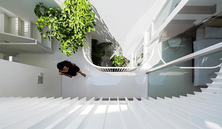 這才叫做「透天厝」 貫穿別墅的玻璃天井讓整棟房子都能注滿陽光 - La Vie行動家 設計改變世界