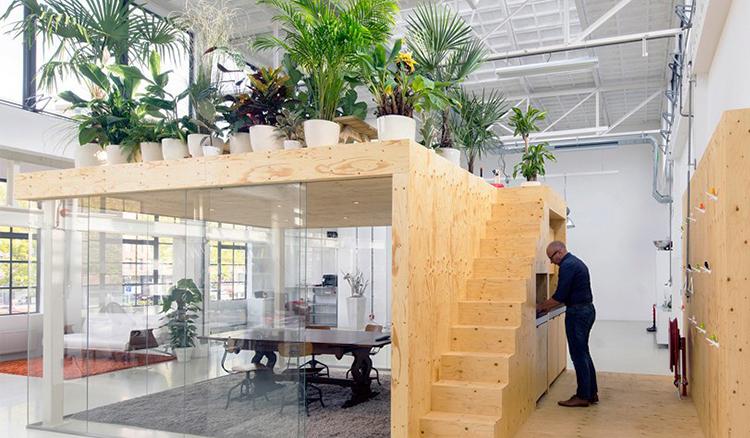 辦公室裡出現空中花園!Loft 輕工業風辦公室現身荷蘭鹿特丹