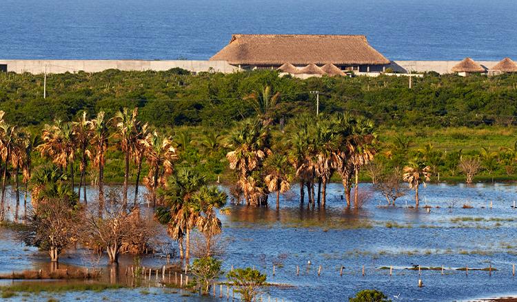 藝術與建築的完美結合 安藤忠雄最新力作現身墨西哥海畔!