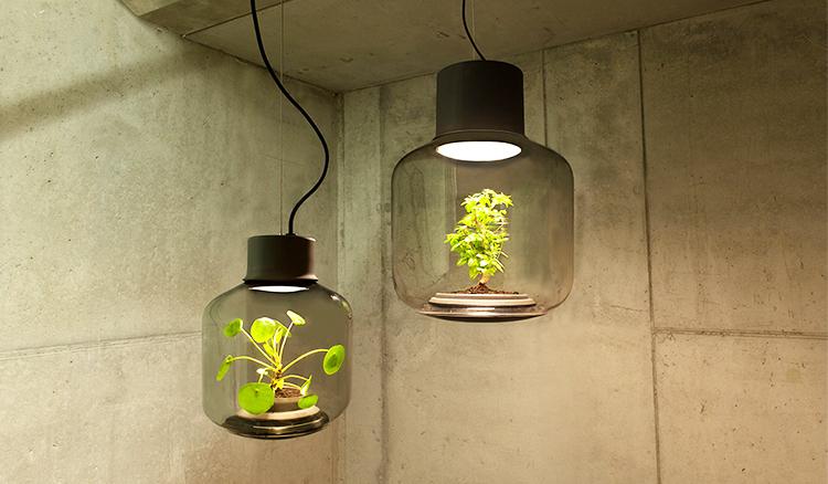 鎖住永恆綠意-Mygdal Plantlamp 植物燈替現代人打造更多「綠」生活 - La Vie行動家 設計改變世界