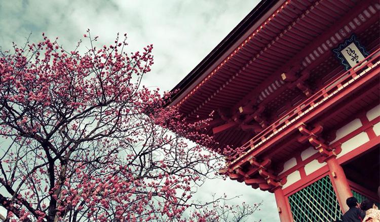 黃金樺:走京都,想台灣-我們要觀光客一年擠爆一次,還是一年來多次,或是一次多留幾天? - La Vie行動家 設計改變世界