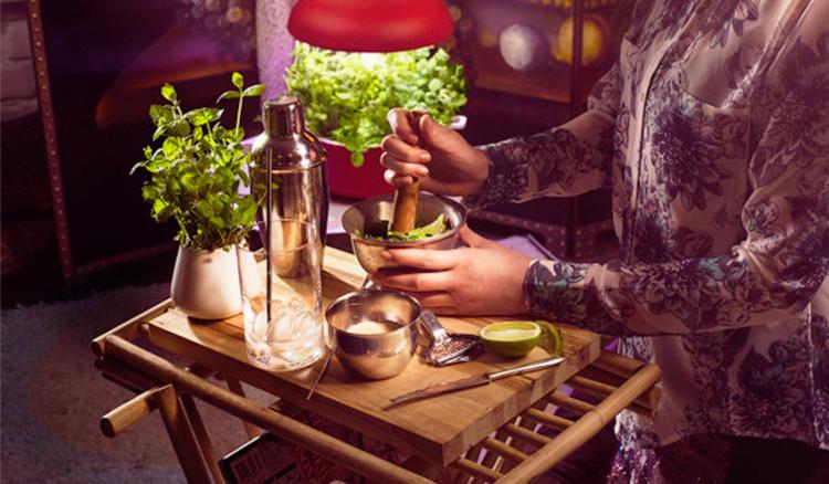 【影片】檯燈=菜園!芬蘭Smart Garden教我們自己吃的青菜自己種!
