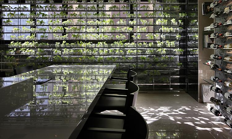 台灣第一位!室內設計師張清平作品「大明大放」榮獲德國紅點金獎!