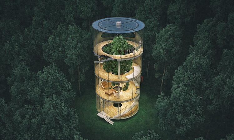 【影片】別人養仙人掌,他在室內種一整棵樹!哈薩克建築師打造環保室內樹屋 - La Vie行動家 設計改變世界