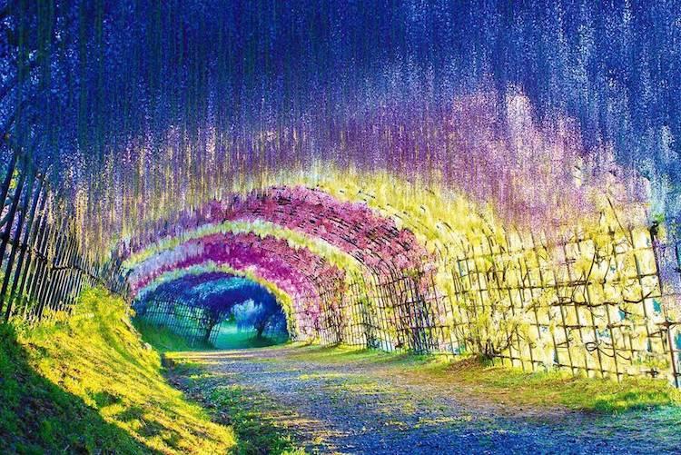 這些隧道真的存在!走進童話世界的夢幻通道特搜!