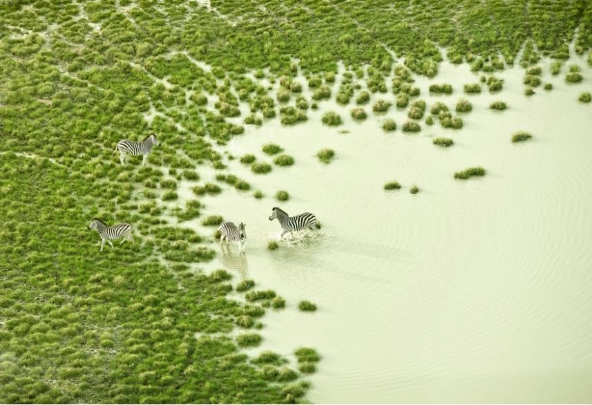 遊走於飄渺的虛實之間!澄澈透明感攝影紀錄非洲南方之美! - La Vie行動家 設計改變世界