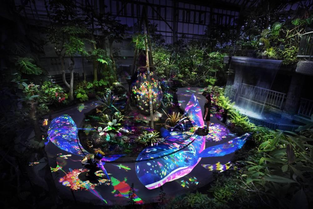 闖入森林神仙的住所!teamLab打造日本花園奇幻仙境 - LaVie 設計改變世界