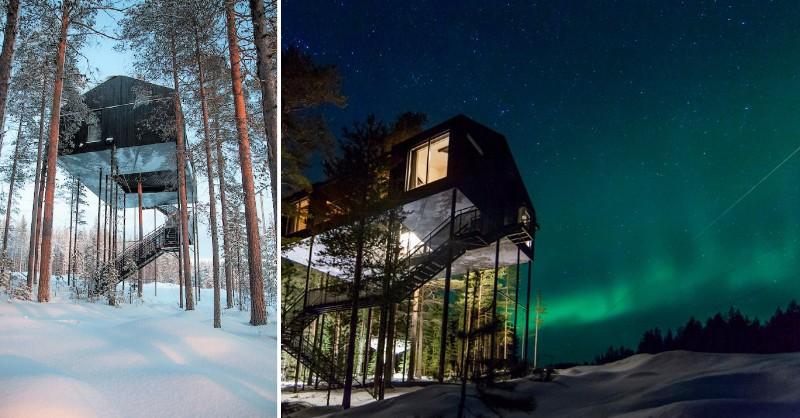 最大、最高樹屋飯店登場!北歐冰雪天地和極光景色盡收眼底