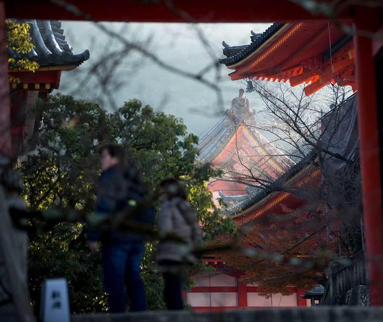 睽違逾半世紀的運河賞櫻遊船再開!京都最新旅遊情報都在這!