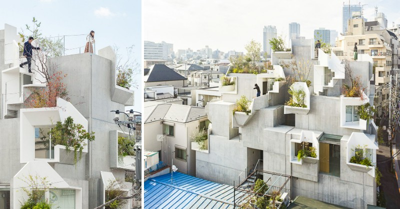 日本自然派建築師平田晃久作品!東京「Tree-ness House」如綠樹般纏繞的有機建築住宅 - La Vie行動家 設計改變世界