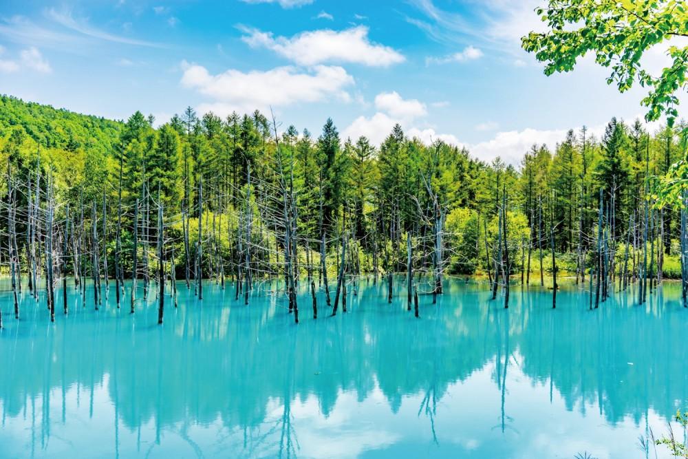 好設計,讓地方重燃元氣!「日本最美的村莊」聯盟守護農山村的景觀與生活 - LaVie 設計改變世界